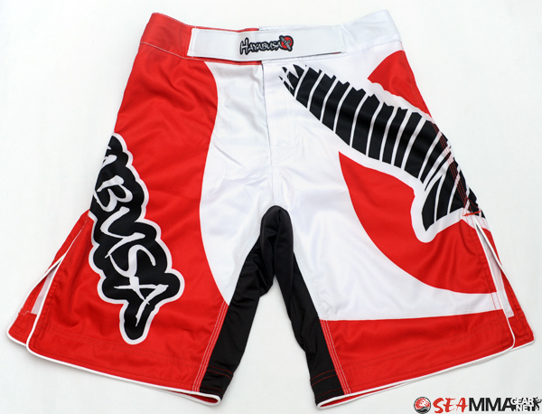 Hayabusa Chikara Shorts + Kusari Training Shirt Review